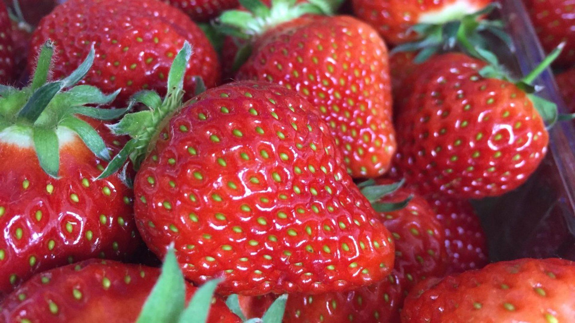 Sharrington strawberries